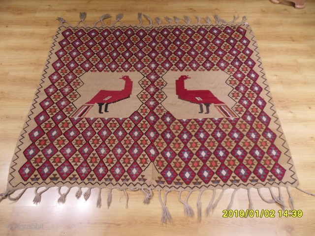 Antique Birds Kilim size: 167x200