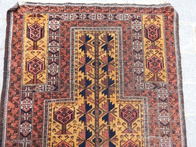 Old Baluch Paryer Rug
