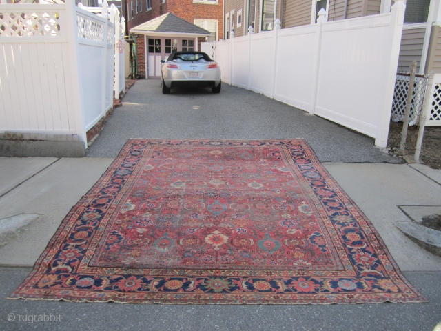 "antique mahal crab design rug 9' x 12' 3"" some wear 3 holes sides and ends are good nice colors cheap money big profit no dry rot SOLDDDDDDDDDDDDDDDDDDDDDDDD"