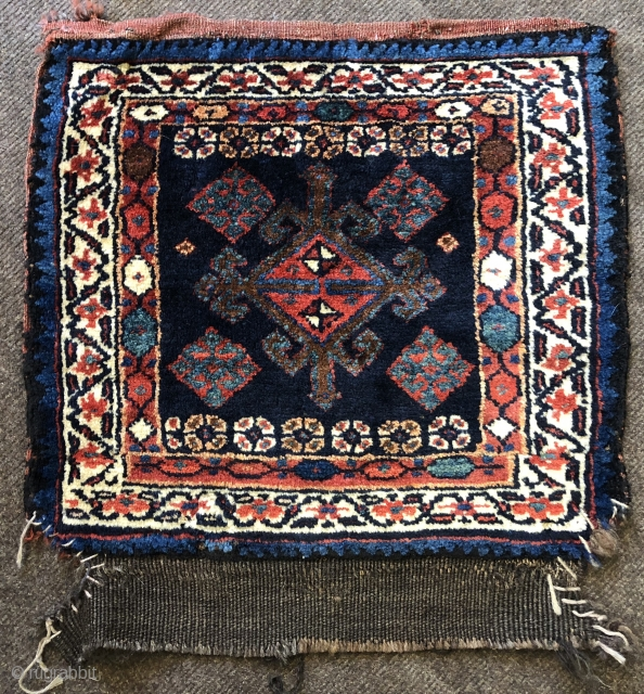 nice Veramin bagface with thick lustrous wool and great natural colours 