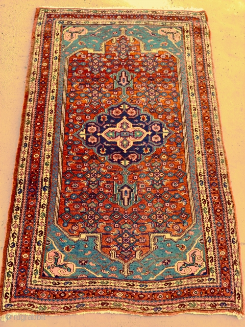 Antique Bidjar, A real gem of a piece. Wool wefts.