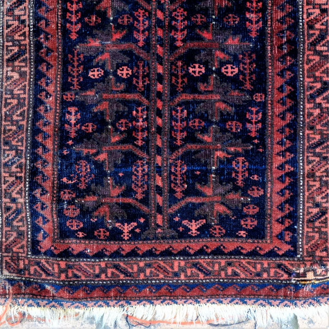 A 19th Century Baluch Balisht