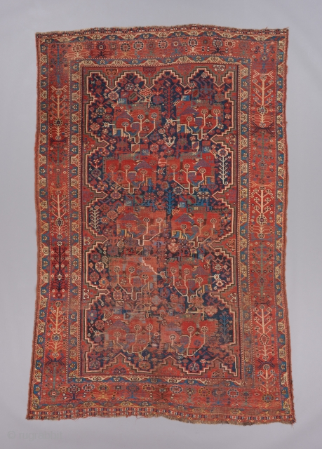 "Qashqai. 8'3"" x 5'5"". 