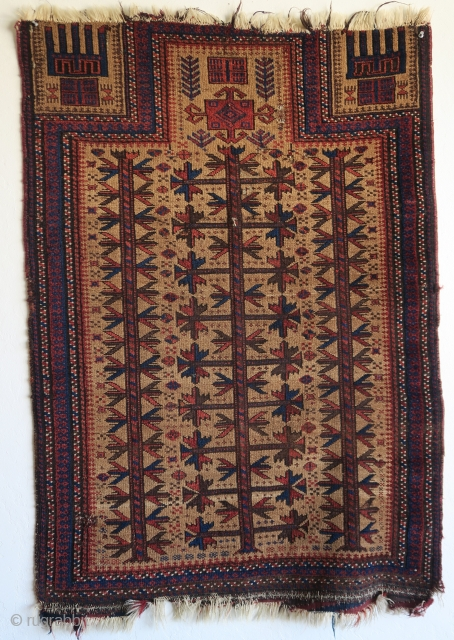 "small camel-ground Baluch prayer rug with nice spacing and great stylized hands. size= 2'8""x3'8"""