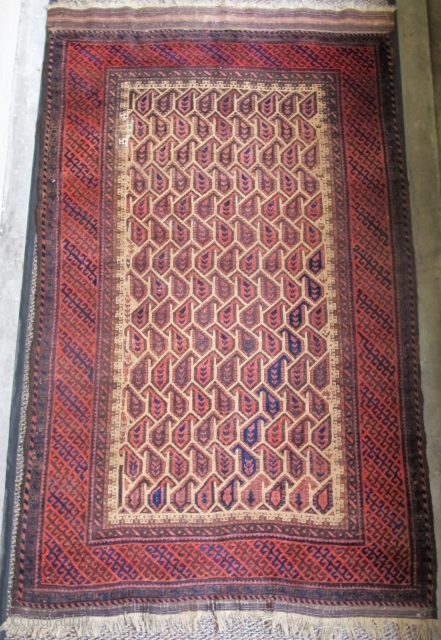 """Camel ground Baluch rug with geometricized botteh and borders.   larger than most Baluch rugs, 3'11""""x6'10"""""""