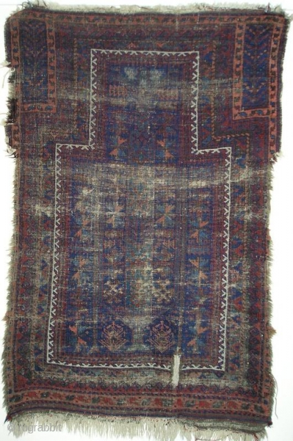 blitzed blue-ground Baluch prayer rug with a green tree in the field