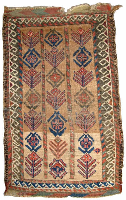 Baluch Camel-ground Poshti, great abrash in the natural camel and soft natural colors including yellow and green. The field displays a rendition of a more typical bag border design. Multi-colored weft including  ...