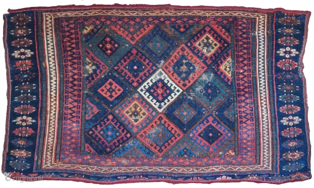 Jaf Kurd bagface, fragmented but with super soft glossy wool.