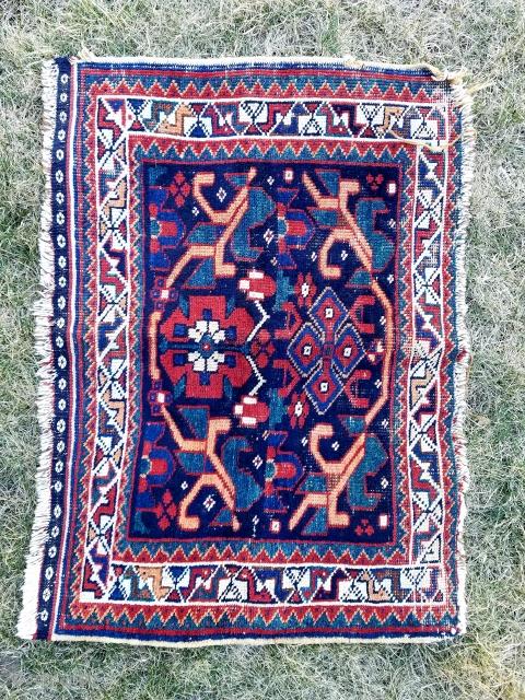 Afshar bagface - nice color and bold design.