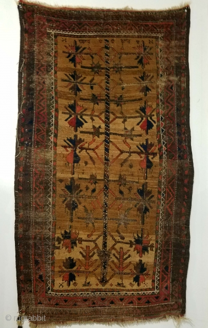 "Baluch - about 31"" x 54"".  Wonderful color and spacious archaic drawing but not without oxidation and wear."