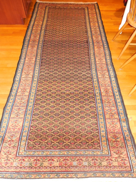 great condition NW persian/maybe Malayir 4 x 10 - $475