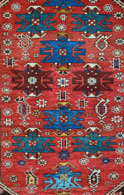 Beautiful Shirvan rug with superb vegetable colours and in absolute mint condition - no repairs whatsoever.