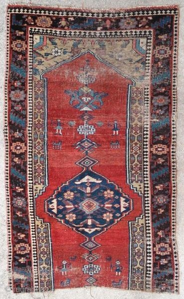 Fragment of Kurdish rug.