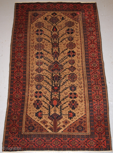 Antique Baluch rug, these Baluch rugs are known as Arab Baluch from the Ferdows region. www.knightsantiques.co.uk Size: 163 x 95cm. 4th quarter 19th century.  The rug has a traditional design unique to this region, the  ...
