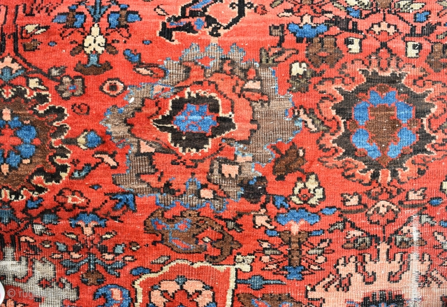 A very large antique Ferahan carpet, cut and worn but fixable and very pretty, circa 1870. 600x420cm