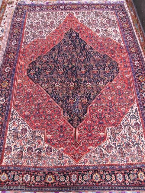 Antique Seneh rug  Fine quality  210x143cm  P.O.R
