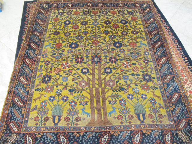 Antique rare Neyriz rug with tree of life design 