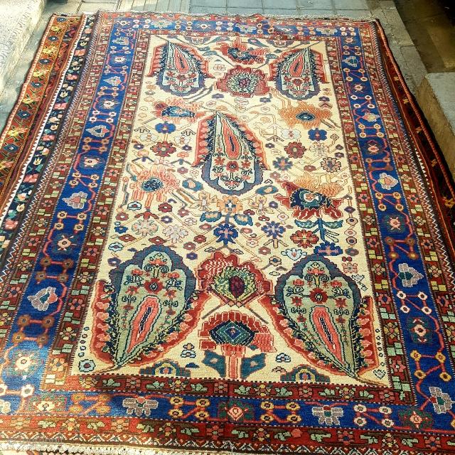 Antique Bakhtiyar rug