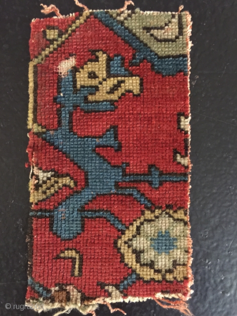 Trans Caucasian fragment?