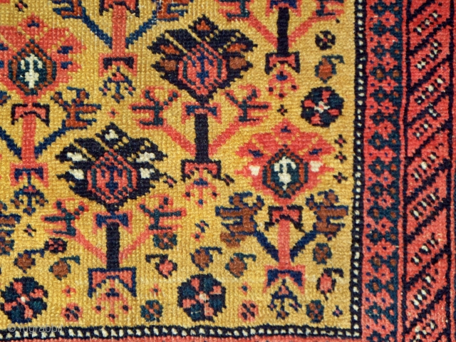 "Afshar rug with manifest Turkmen design influences, unusual field composition with folk-art milieu,  33"" x 53"" (83 x 134 cm), all natural dyes, end constructs in excellent condition, professionally washed."