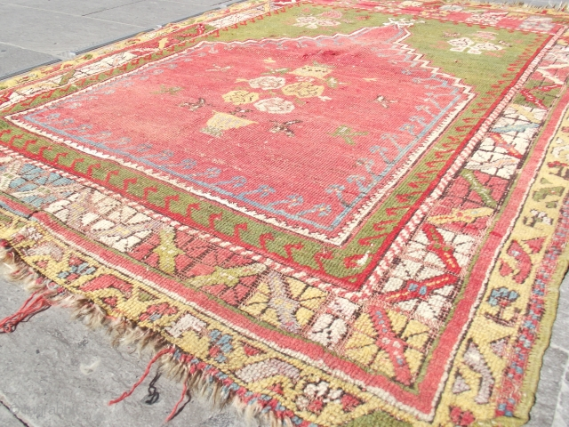 size: 113 x 150 (cm) 