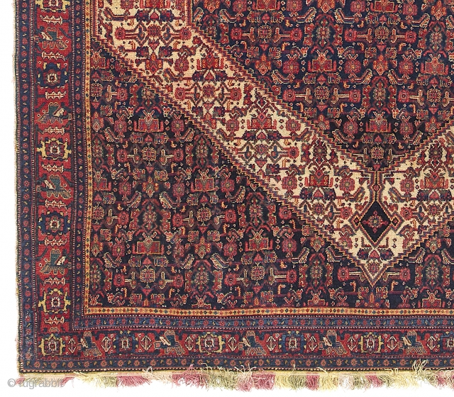 Fine Antique Persian Senneh Rug with colorful fringes. 4.3 x 6.7 ft (130x201 cm). Very good condition, original as found.