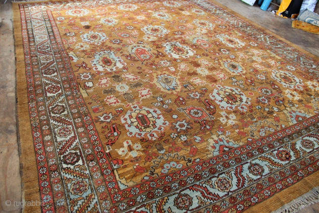 "19th century Bakshiash carpet 330 x 430/ 11'0"" x 14'2"" in perfect condition"