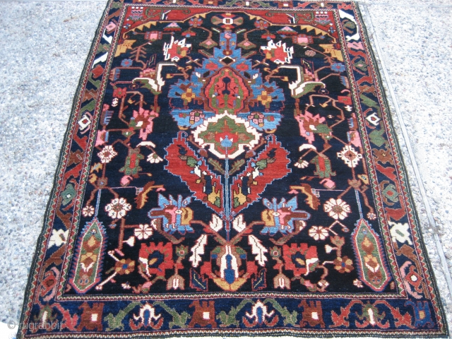 "Bahktiari directional design rug 4' 9"" x 6' 4"".
