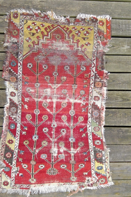 Old Anatolian Prayer Rug fragment, 3 Trees on Red.