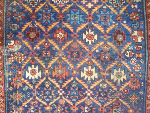 East Caucasian Gold lattice on Blue field, varied and dynamic array of filler motifs, both in the 53 lattice cells and along sides. 6 x 4 feet. Full pile, visible spot of  ...