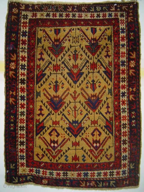 Avar small rug with heraldic palmettes in lattice on yellow ground, 31.5 x 43 inches (80 x 109 cm). Luminous colors. Excellent condition.