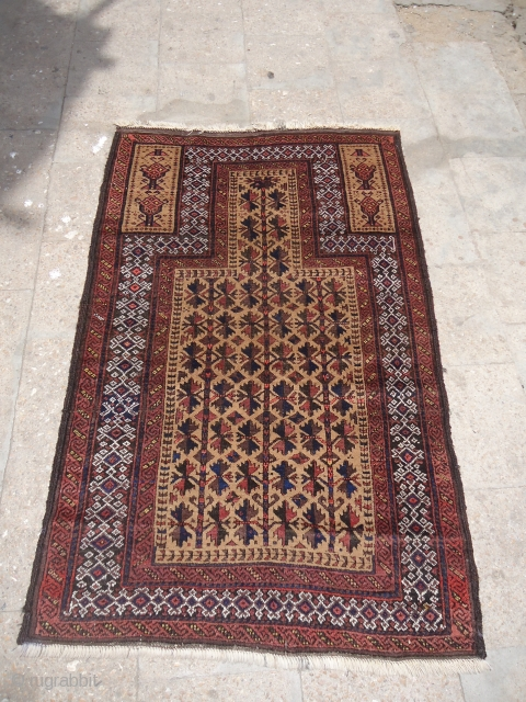 """Pretty Baluch Prayer Rug with very good desigen and condition,good age and colors,fine weave,very nice desigen.Size 4'9""""*3.E.mail for more info and pics."""