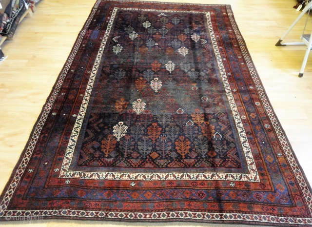 Good Kurdish or Baluch rug with shrub design, size: 263 x 174cm.