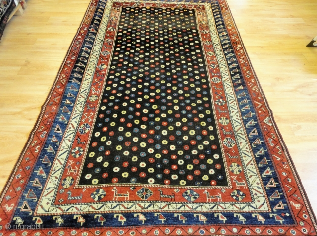 Outstanding Kurdish rug, superb wool and great colours, Size: 250 x 152cm.