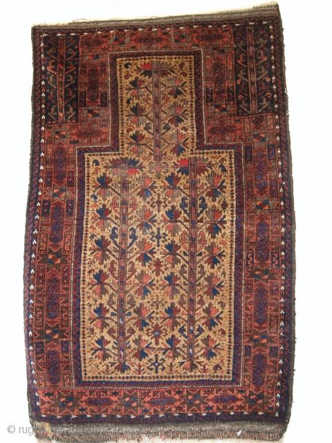 Camel ground Baluch prayer rug, size: 130 x 80cm. www.knightsantiques.co.uk