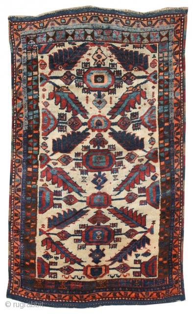 "Eastern Anatolian Kurdish rug; circa 1920; excellent conditions; 3'1"" x 6'2""; shaggy pile; vibrant colors - all natural dyes: ID JF4279"
