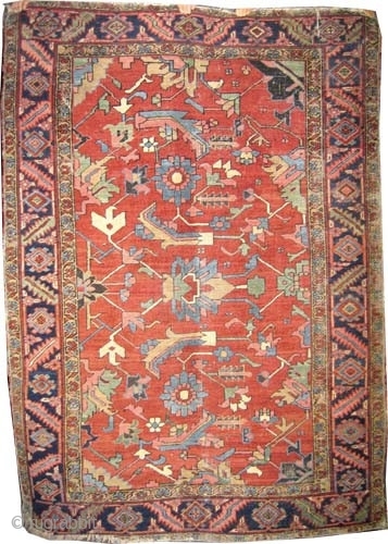 """Serapi Heriz Persian circa 1910 antique. Size: 208 x 151 (cm) 6' 10"""" x 4' 11""""  carpet ID: K-5631 Vegetable dyes, the black color is oxidized, the knots are hand spun wool,  ..."""