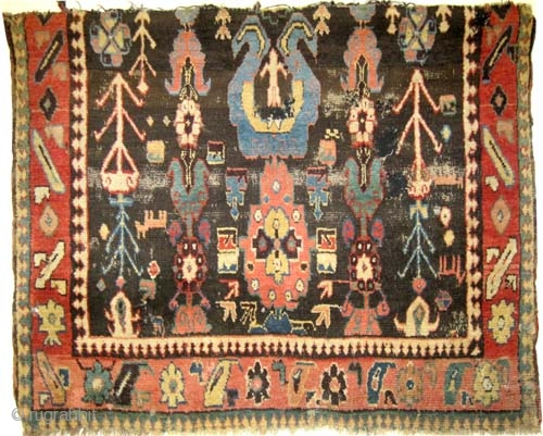 "Fragment Karabag Caucasian antique. Collector's item. Size: 120 x 97 (cm) 3' 11"" x 3' 2""  carpet ID: K-3279 high pile, the black color is oxidized, vegetable dyes, the warp and  ..."