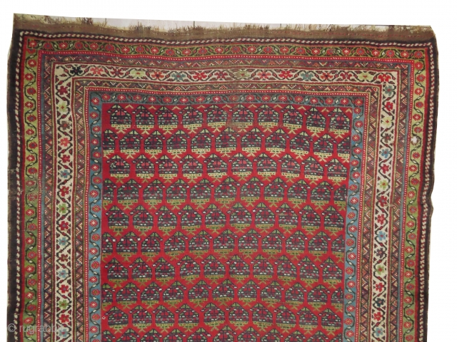 Farahan Persian, knotted circa in 1880, antique, collectors item, 148 x 280 cm, carpet ID: BRDI-19 The knots, the warp and the weft threads are mixed with wool and goat hair, one edge  ...