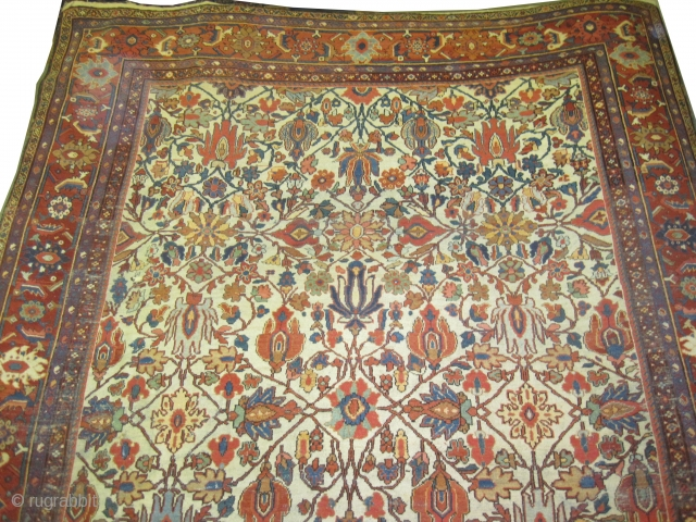 "Ziegler-Mahal Persian circa 1905. Antique. Size: 390 x 270 (cm) 12' 9"" x 8' 10""  carpet ID: P-5201 