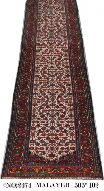 Antique Malayer circa 1900, in Perfect condition. wool on wool.Size: 505x102 cm