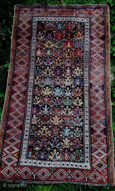 Very attractive North Shirvan carpet with wide range of natural dyes and an elegant ascending pattern. 19c. Approx 4x6 feet. Good condition with replaced selvage, losses at ends, oxidized ground and some  ...