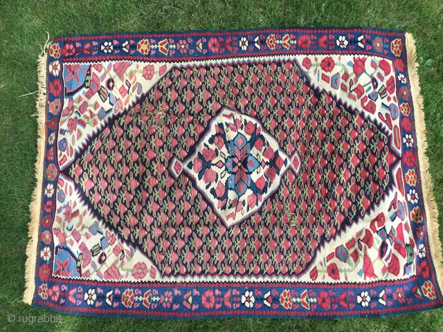 """Bijar kilim, c.1900 on cotton warp. 44""""X58"""". Has two areas of missing weft. See pictures. Good color. Inexpensive!"""