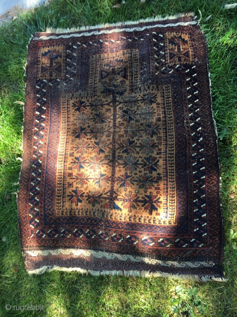 Antique Baluch Prayer Rug with tree of life design. Camel hair field, with good quality weft-float end finish and some selvage remaining. Corrosion of dark brown dye, as often found in early  ...