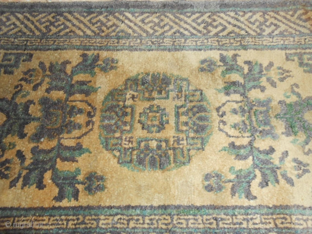 120 x 63 cm