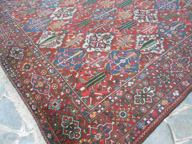 cm 355x328 is tha size of this Chahar Mahal -va-Bachtiari carpet.