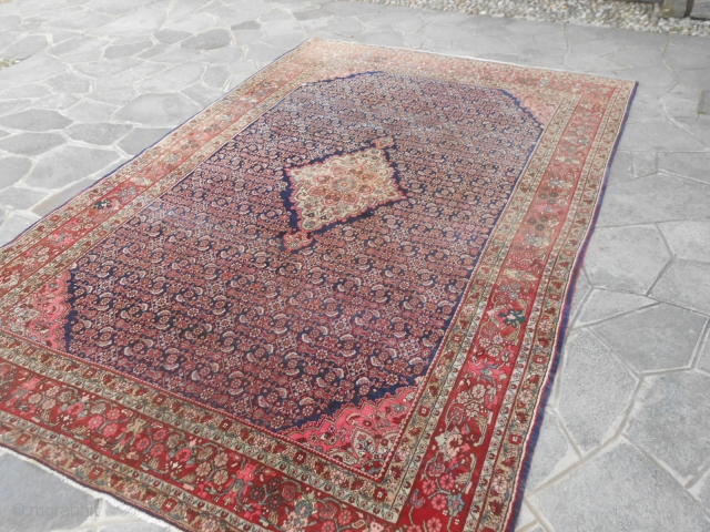 Old Persian BIJAR 