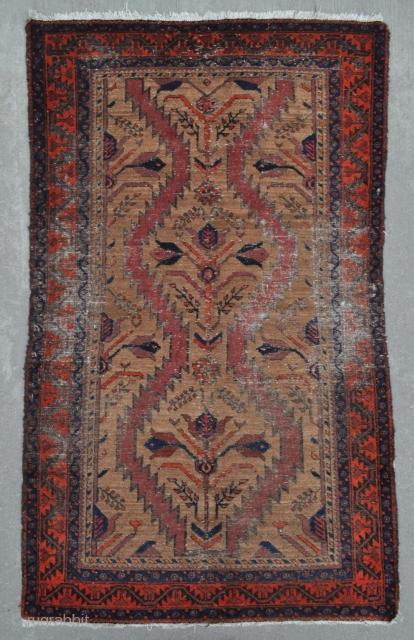 Baluch rug with Camel ground - 3'5 x 5'7 - 104 x 169 cm.