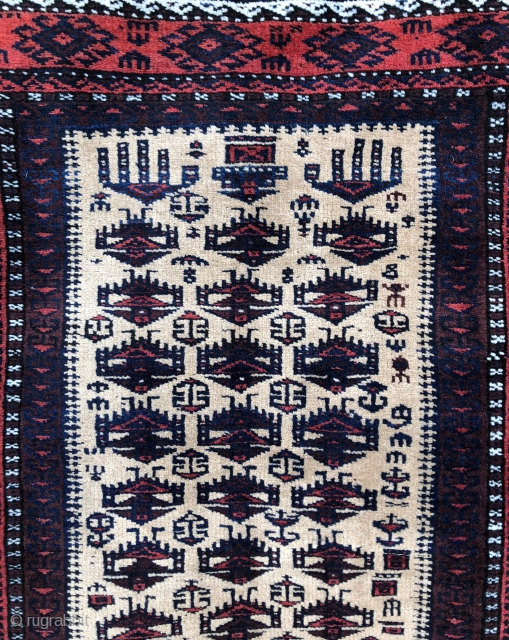 Super fine exceptional Baluch Prayer rug in mint condition! Check out the back!
