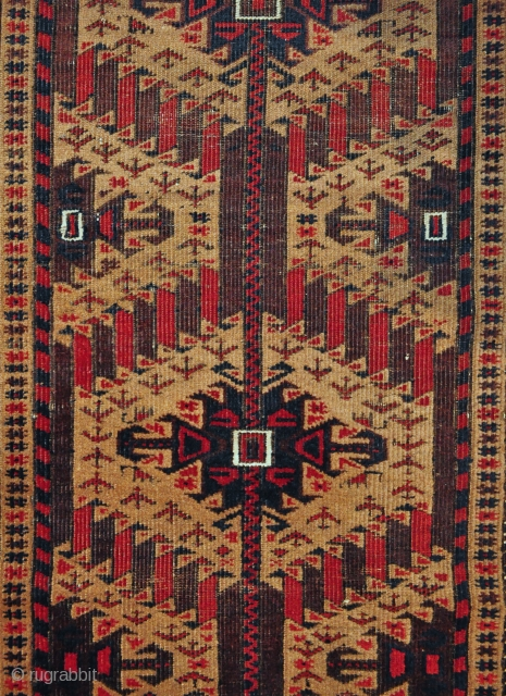 Baluch rug with camel field, small scattered animal and bird figures, classical border with sharp details - 2'11 x 5'6 ft. - 89 x 167 cm.